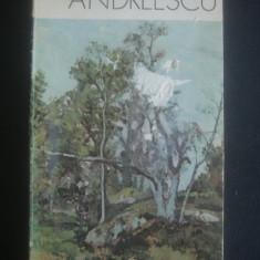 IULIAN MEREUTA - ANDREESCU