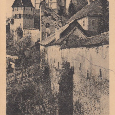 SIGHISOARA , SALUTARI DIN SIGHISOARA , CIRCULATA IUN. 1915, Printata