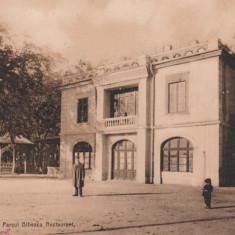 CRAIOVA, PARCUL BIBESCU, RESTAURANT, TCV, CIRCULATA 1913 - Carte Postala Oltenia 1904-1918, Printata