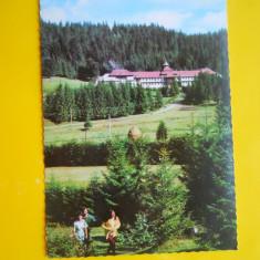 HOPCT 17048 STANA DE VALE -JUD BIHOR -NECIRCULATA - Carte Postala Crisana dupa 1918, Printata