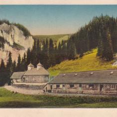 SINAIA, PESTERA, MANASTIREA PESTERA - Carte Postala Muntenia dupa 1918, Necirculata, Printata