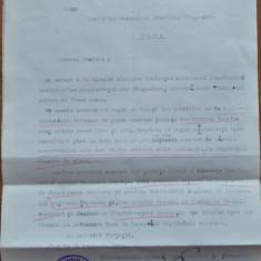 Lot de documente si scrisori in limba maghiara MADOSZ din Ardeal, 1937 si dupa