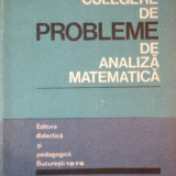CULEGERE DE PROBLEME DE ANALIZA MATEMATICA de MARIANA CRAIU, MARCEL N. ROSCULET