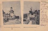 CASTELUL REGAL PELES , VEDEREA FATADEI DE EST SI SUD-EST SOUVENIR DE SINAIA 1900