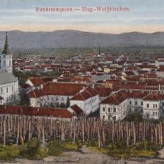 SIGHISOARA, CIRCULATA OKT.''918 - Carte Postala Transilvania dupa 1918, Printata