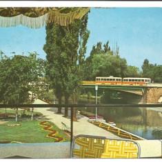 @carte postala(cod 347/71)-TIMIS-Timisoara -Parcul Alpinet - Carte Postala Banat dupa 1918, Circulata, Printata
