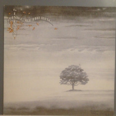 GENESIS - WIND & WUTHERING (1976/ CHARISMA /GERMANY ) - Vinil/ROCK /Impecabil - Muzica Rock universal records