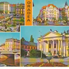 CPI (B7213) CARTE POSTALA - ORADEA. CENTRU, PALATUL VULTURUL NEGRU, TEATRUL - Carte Postala Crisana dupa 1918, Necirculata, Fotografie