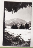 bnk cp Muntii Rodnei - Vedere spre varful Pietrosul - necirculata
