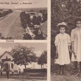 SARATA, MOLDOVA, MAGAZIN DE CONSUM DIN SARATA, FETE DIN SARATA, ROHRRANK - Carte Postala Moldova dupa 1918, Necirculata, Printata
