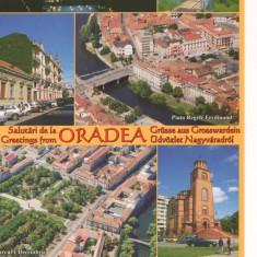 CPI (B7270) CARTE POSTALA - SALUTARI DIN ORADEA. MOZAIC - Carte Postala Crisana dupa 1918, Necirculata, Fotografie