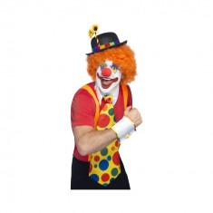 Accesorii Costum Clovn - Carnaval24