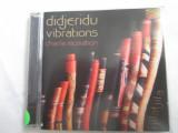 Charlie McMahon - Didjeridu Vibrations  CD,Germania