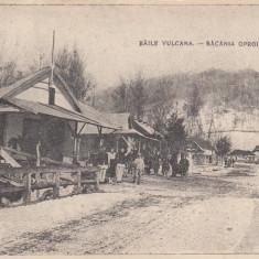 BAILE VULCANA , DAMBOVITA , BACANIA OPROIU , CIRCULATA 1922