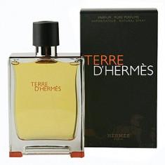 Hermes Terre D'Hermes EDP 200 ml pentru barbati - Parfum barbati Hermes, Apa de parfum