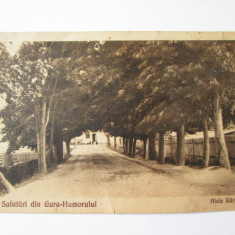 CARTE POSTALA GURA HUMORULUI 1929 EDITURA ADOLF SAHERZER - Carte Postala Bucovina dupa 1918, Circulata, Printata