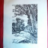Gravura pe lemn semnata Sz B- Gy.Szabo Bela 1944 -Peisaj cu rau, 21x13, 5 cm grav - Pictor roman, Peisaje, Cerneala, Altul