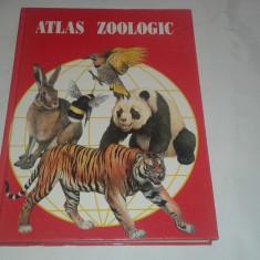 Prof.ANUTA IONESCU-ANDREI - ATLAS ZOOLOGIC