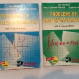 PROBLEME DE ANALIZA MATEMATICA Vol.I si II*Ion Petrica*Emil Constantinescu - Carte Matematica