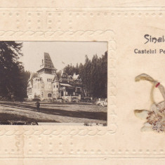 CASTELUL PELISOR, SINAIA, CIRCULATA JUN. *925 - Carte Postala Muntenia dupa 1918, Fotografie