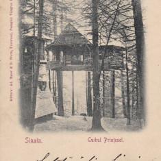 CUIBUL PRINTESEI, SINAIA, CIRCULATA AUG.*902 - Carte postala tematica, Printata