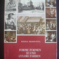 RODICA IRIMIE FOTA - FORME SI CULORI {bilingv} - Carte Istoria artei