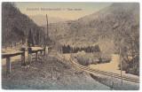 #1727- Romania, Maramures, c.p. circ. 1915: Peisaj montan, raul Tisza, sine c.f.