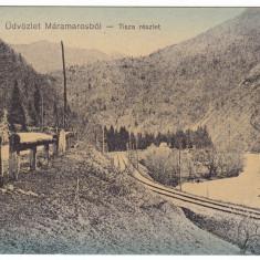 #1727- Romania, Maramures, c.p. circ. 1915: Peisaj montan, raul Tisza, sine c.f., Circulata, Fotografie
