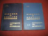 D. Flondor, N. Donciu - Algebra si analiza matematica (2 volume)