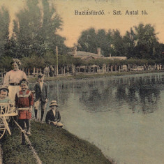 BUZIAS, CIRCULATA JUL. 1916 - Carte Postala Banat dupa 1918, Printata