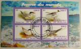 Colita pasari Burundi 2011 (394)