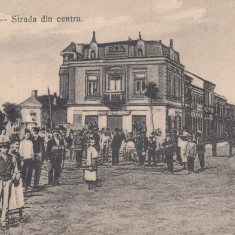 SILISTRA, STRADA DIN CENTRU, DOBROGEA - Carte Postala Dobrogea dupa 1918, Necirculata, Printata