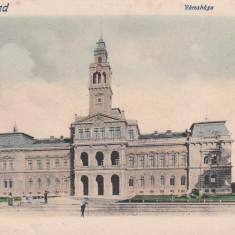 ARAD, PRIMARIA, CLASICA - Carte Postala Crisana pana la 1904, Necirculata, Printata