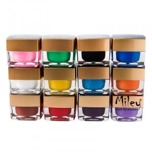 Kit set unghii gel - lampa UV,pila,cleste,tipsuri,12 geluri color  - KIT SINA
