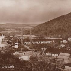 TULCEA, MANASTIREA ''CILIE - DERE'' - Carte Postala Dobrogea dupa 1918, Necirculata, Fotografie