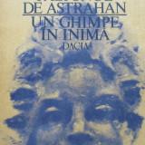 Paltonul de astrahan - Un ghimpe in inima -  Piero Chiara