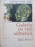 Galeria cu vita salbatica - Constantin Toiu