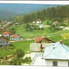 @carte postala(ilustrata) -BUSTENI -Pe Zamora - Carte Postala Muntenia dupa 1918, Circulata, Printata