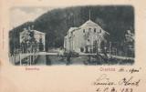 ORAVITA , BANYAVOLGY , CLASICA , CIRCULATA APR.''901, Printata