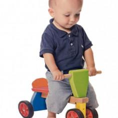 Tricicleta Mica - VIGA - Tricicleta copii, Unisex