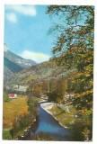 @carte postala(ilustrata) -Valea Cernei, Circulata, Printata