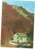 @carte postala(ilustrata) -BISTRITA NASAUD-CORMAIA-Cabana Farmecul Padurii, Circulata, Printata