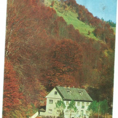 @carte postala(ilustrata) -BISTRITA NASAUD-CORMAIA-Cabana Farmecul Padurii