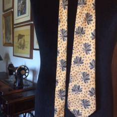 Cravata CERRUTI 1881 matase, Culoare: Multicolor