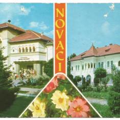 @carte postala(cod 2901/79) -GORJ-colaj - Carte Postala Oltenia dupa 1918, Circulata, Printata
