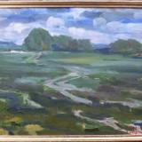Peisaj (2) - semnat S.Arhiri 2003 - Pictor roman, Peisaje, Ulei, Altul