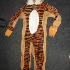 Costum 'TIGRU', 128cm-8-9ani - Costum carnaval, Marime: S/M, Culoare: Din imagine