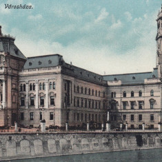 ORADEA, PRIMARIA - Carte Postala Crisana dupa 1918, Necirculata, Printata