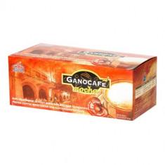 GanoCafe Mocha - Conserve