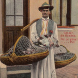 VANZATOR PUI DE GAINA, SALUTARI DIN ROMANIA CIRCULATA - Carte postala tematica, Printata